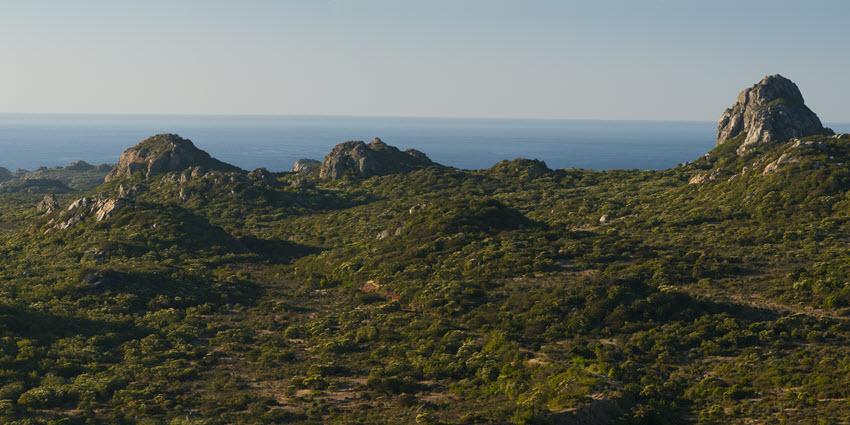 Proyecto Rocas del Mar - Sitios de Inmobiliaria Foresta del Mar-11