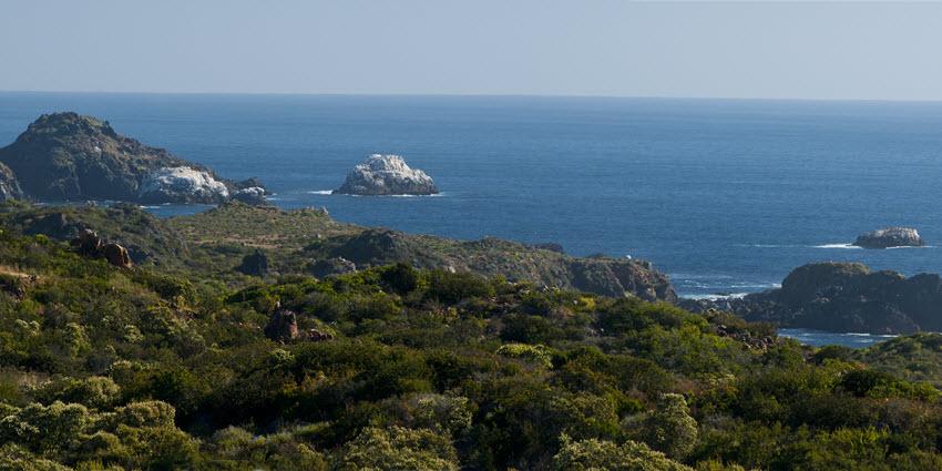 Proyecto Rocas del Mar - Sitios de Inmobiliaria Foresta del Mar-12
